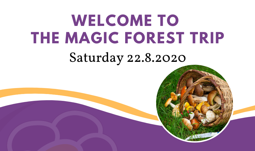 Magic Forest Trip 22.8.2020